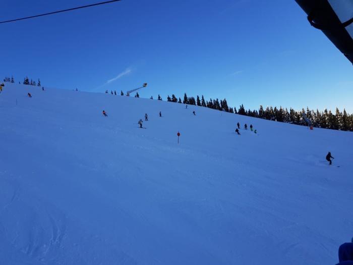 skikurs-2019-021